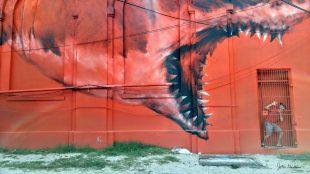 Jonah & the Whale Deja vu